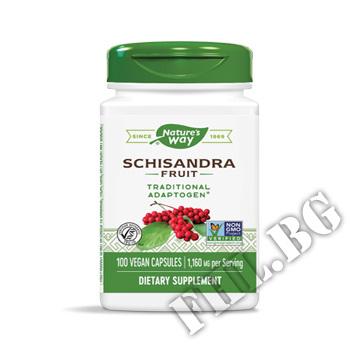 Действие на Шизандра Schizandra Fruit мнения.Най-ниска цена от Fhl.bg-хранителни добавки София