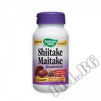 Действие на Shiitake Maitake Stand мнения.Най-ниска цена от Fhl.bg-хранителни добавки София