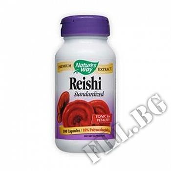 Действие на Рейши |Reishi Stand мнения.Най-ниска цена от Fhl.bg-хранителни добавки София