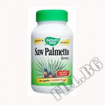 Съдържание » Цена » Прием » Сао Палмето плод|Saw Palmetto Berries