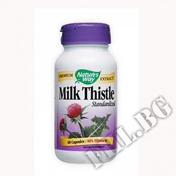 Съдържание » Цена » Прием » Млечен бодил|Milk Thistle Stand