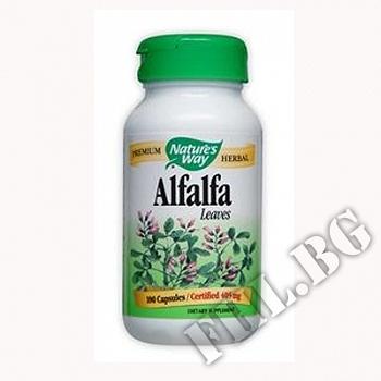 Действие на Люцерна лист| Alfalfa Leaves мнения.Най-ниска цена от Fhl.bg-хранителни добавки София