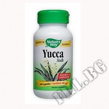Действие на Юка/Yucca Stalk мнения.Най-ниска цена от Fhl.bg-хранителни добавки София