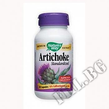 Съдържание » Цена » Прием » Артишок |Artichoke Stand.