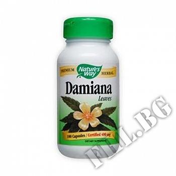 Действие на Дамиана лист |Damiana мнения.Най-ниска цена от Fhl.bg-хранителни добавки София