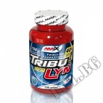 Съдържание » Цена » Прием » TribuLyn-Tribulus Terrestris 40%