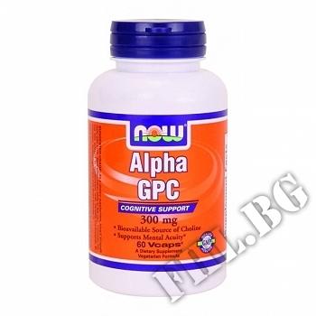 Съдържание » Цена » Прием » Alpha GPC 300 мг - 60 капсули