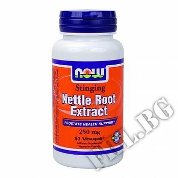 Действие на Nettle Root Extract  мнения.Най-ниска цена от Fhl.bg-хранителни добавки София