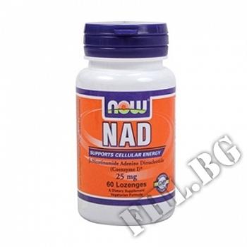 Съдържание » Цена » Прием » NAD Никотинамид аденин динуклеотид