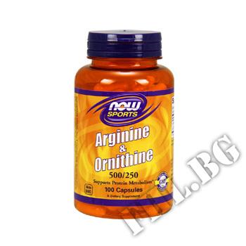 Съдържание » Цена » Прием » Arginine/Ornithine 500/250 мг