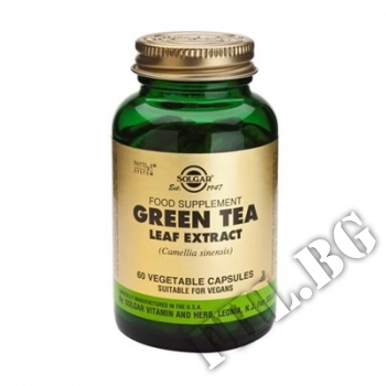 Действие на SOLGAR Green Tea  50 capsules мнения.Най-ниска цена от Fhl.bg-хранителни добавки София