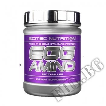 Съдържание » Цена » Прием » Egg Amino Scitec