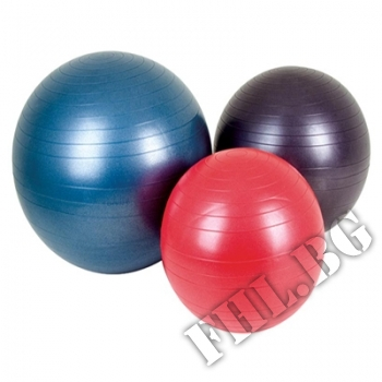 Съдържание » Цена » Прием »  Fitness Ball