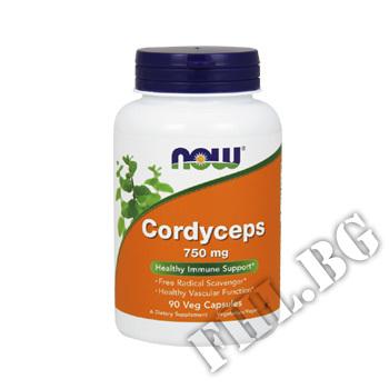 Съдържание » Цена » Прием » Cordyceps 750 мг