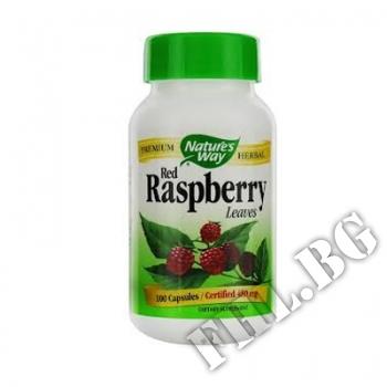Съдържание » Цена » Прием » Red Raspberry Leaves
