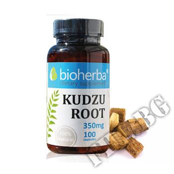 Съдържание » Цена » Прием » Kudzu Root /Кудзу