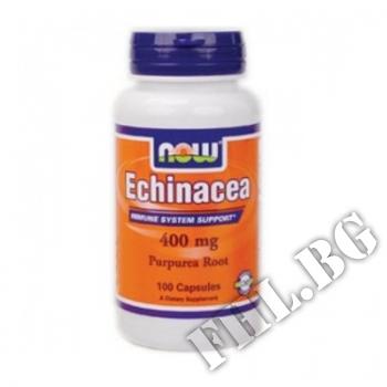 Действие на Echinacea 400 мг мнения.Най-ниска цена от Fhl.bg-хранителни добавки София