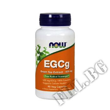 Съдържание » Цена » Прием » EGCG Green Tea Extract 400 мг