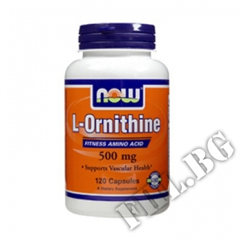 Съдържание » Цена » Прием » L-Ornithine 500 мг - 60 капсули