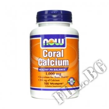 Съдържание » Цена » Прием »  Coral Calcium