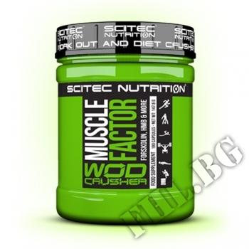 Съдържание » Цена » Прием » Muscle Factor Wod Crusher