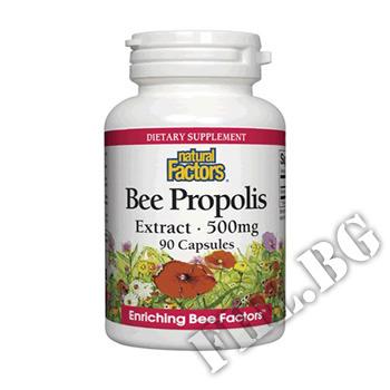 Съдържание » Цена » Прием » Bee Propolis