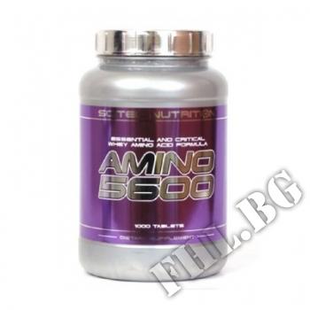 Съдържание » Цена » Прием »  Amino 5600-1000