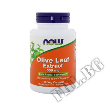 Действие на Olive Leaf Extract 500 мг мнения.Най-ниска цена от Fhl.bg-хранителни добавки София