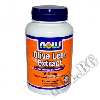 Съдържание » Цена » Прием » Olive Leaf Extract 500 мг
