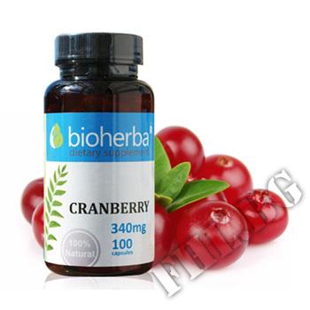 Съдържание » Цена » Прием »  Cranberry 340mg
