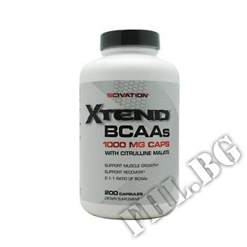 Съдържание » Цена » Прием »  Xtend BCAA Caps