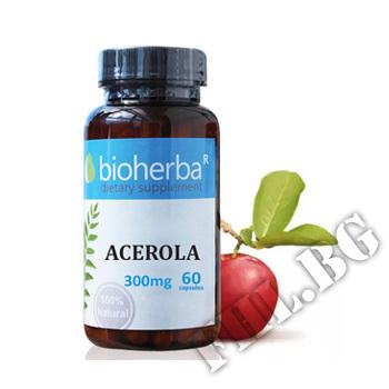 Действие на Acerola 300 mg мнения.Най-ниска цена от Fhl.bg-хранителни добавки София
