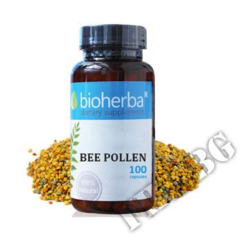 Съдържание » Цена » Прием » Пчелен прашец