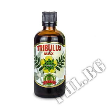 Съдържание » Цена » Прием »  Трибулус Макс - 100 мл
