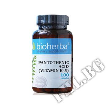 Действие на Pantothenic Acid (Vitamin B-5) - 100 caps мнения.Най-ниска цена от Fhl.bg-хранителни добавки София