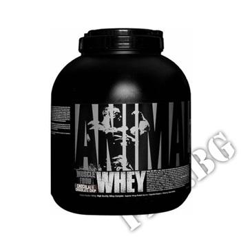 Съдържание » Цена » Прием »  Animal Whey 5 lbs