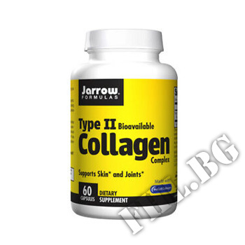 Съдържание » Цена » Прием »  Type 2 Collagen Complex Supports Skin and Joints