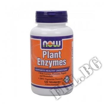 Съдържание » Цена » Прием »  Plant Enzymes 120 caps