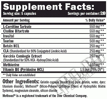 Съдържание » Дозировка » Прием » Как се пие »  Lipotropic Fat Burner 100 » AMIX » Липотропни фетбърнъри