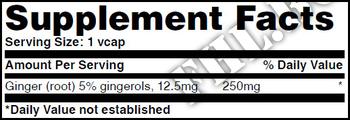 Съдържание » Дозировка » Прием » Как се пие » Джинджифил  » Haya labs » Антиоксиданти