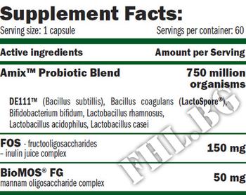 Съдържание » Дозировка » Прием » Как се пие » GreenDay PROBIO DAILY  » AMIX » Храносмилане ензими и пробиотици