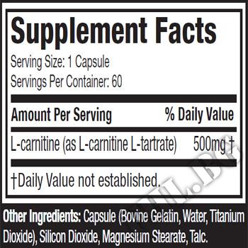 Съдържание » Дозировка » Прием » Как се пие »  Essentials series Platinum 100% Carnitine » MuscleTech » Л-карнитин
