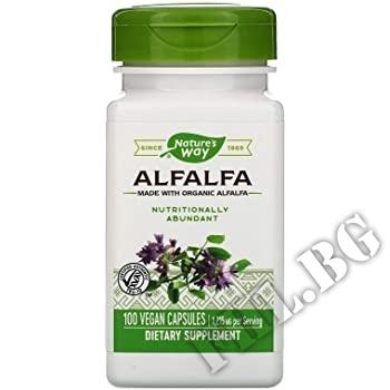 Съдържание » Дозировка » Прием » Как се пие » Люцерна лист| Alfalfa Leaves » Nature's Way » Зелени Храни